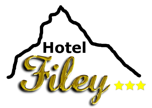 logo filey cervino